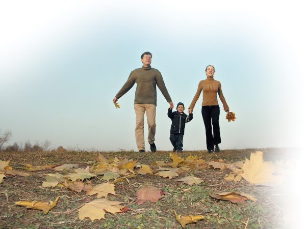 wills, asset protection wills and lasting power of attorney